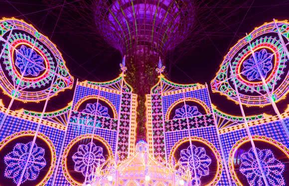 光の芸術 神戸ルミナリエ鑑賞と生演奏に彩られる神戸港ランチクルーズ 2日間