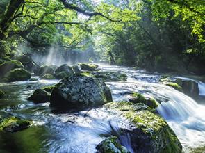 <復路はゆったりグリーン車利用!>熊本のうまかもんグルメを満喫!!緑輝く阿蘇・菊池渓谷と今しか見られない熊本城 2日間