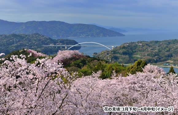 船でしか行けない絶景の温泉宿にご宿泊 瀬戸内海・貸切桜クルーズ 2日間