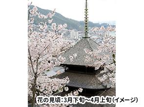 夜桜美しい千光寺公園に隣接するお宿に泊まる 春爛漫!潮待ちの宿「鞆の浦」と海辺の街「尾道」散策 2日間