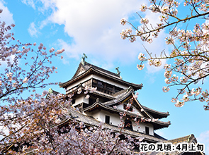 桜舞う玉造温泉に優雅に連泊 のんびり出雲大社参拝と松江・足立美術館 3日間
