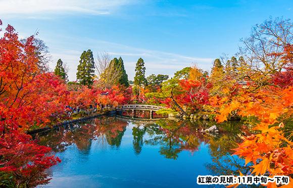 近江の紅葉「湖東三山」めぐりと京都随一の紅葉名所「もみじの永観堂」 3日間