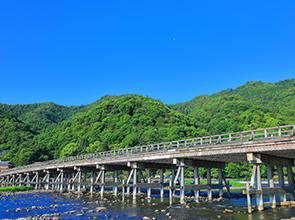 深緑の嵐山と伊藤若冲の魅力に触れる 日帰り