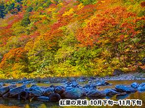 紅葉の三段峡ハイキングとせとうち紅葉ハイライト 2日間