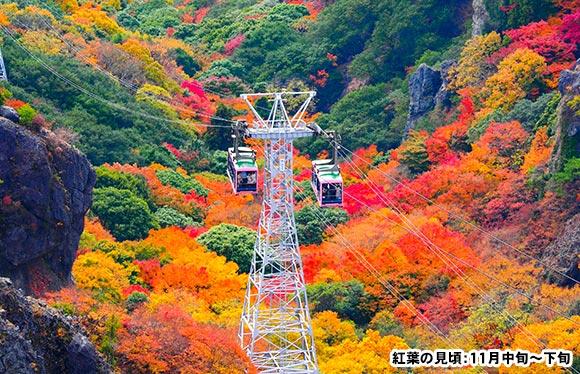 四国随一の紅葉渓谷美 秋色に染まる小豆島 2日間