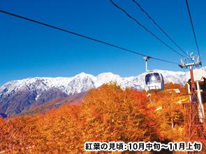 山岳リゾートで寛ぐ 紅葉に彩られた信州白馬で過ごす秋のひととき 4日間