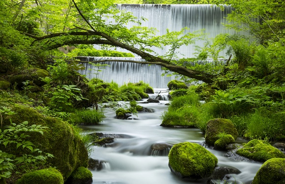 爽快!奥大山ウォークと鳥取5つの絶景スポット 2日間
